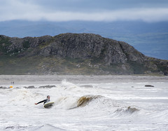 Surfers at Criccieth Beach (RedPlanetClaire) Tags: wales summer criccieth surfer beach sea bay