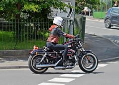 Biker Girl.. (Harleynik Rides Again.) Tags: 4t8 sportster bobber bike girl motorcycle bikerbabe harleydavidson harleynikridesagain nikondf 85mm