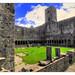 Sligo IR - Sligo Abbey 09