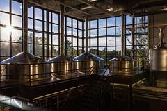 CM Pro-131 (sbmceligot) Tags: berkshires treehousebrewingco beer brewery fallfoliage weekendtrip