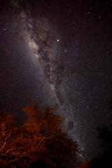 Southern Sky (MrBlackSun) Tags: lodge atacama backyard ethno lodgespa sanpedro sanpedrodeatacama milkyway nikon d850 landscape nightscape landscapephotography naturephotography nature
