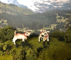 Kids in the Alps (Foxy Belle) Tags: scene alps mountains swiss german kids goats baby animal plastic toy schleich diorama 112 outside alpine plants grass turf model green summer spring