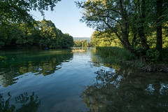 Cold river Una (elkarrde) Tags: travel travelphotography landscape nature panasonic panasoniclumixdmcgx7 panasonicgx7 panasoniclumix lumix dmcgx7 gx7 camera:model=dmcgx7 camera:brand=panasonic olympus olympusmzuiko1442mm13556iir 1442 1442mm 14423556 kitlens lens:brand=olympus lens:model=mzuiko1442mm13556iir bosnia bosniaandherzegovina river una riveruna water trees japodianislands nationalpark nationalparkuna park summer august 2019 summer2019 august2019 twop