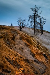Afternoon at Mammoth Springs Terraces. Yellow stone National Park. (MunishKailaPhotography) Tags: dawn sunrisecolors lonelyplanet outdoors mammothhotsprings mamothupperterraces cloudscolors yellowstonenationalpark hotsprings volcano usnationalparks colors geology cloudscape cloudyday landscapecaptures visitwyoming visitmontana findyourpark summerday clouds amazingplaces geothermal wanderlust mountains geothermalpool travelphotography travelshots depthsofearth roamtheplanet