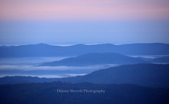 Dreamy Blue Ridge Mountain morning... (Dianne Sherrill Photography) Tags: sunrise blueridgemountains northcarolina mountains