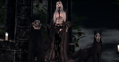 Creatures of the Night (Diavkha) Tags: goth gothic macabre dark horror monster vampire witch wicca demon demonic femboy boy genderbender crossdressing haunting secondlife second life avatar photography flatchest male androgynous