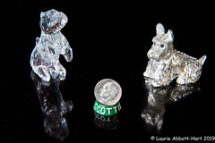 20190813 ODC Scale30754-Edit (Laurie2123) Tags: laurieabbotthartphotography laurieturnerphotography laurietakespics odc odc2019 ourdailychallenge scottieterrier figurine scale dime waterford crystal silver againstblack reflection offcameralighting ad200 scottishterrier