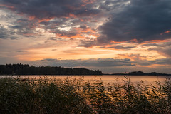 FreeAtLast (A.Koponen) Tags: canon canonphotography eosr rf50mmf12l hoya lseries lakephotography kuopio suomi suomiphoto discoverfinland nature naturephotography sunsetphotography sunsetsniper sunset thebestoffinland thisisfinland