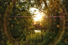 (placeinsun) Tags: vermont middlebury summer landscape sunset sunspots green river trees