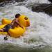 Rubber Ducky - Clear Creek - Golden, Colorado