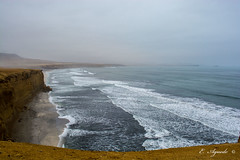 Costline (E. Aguedo) Tags: ica paracas peru southamerica ocean pacific shoreline costline sand water beach fog