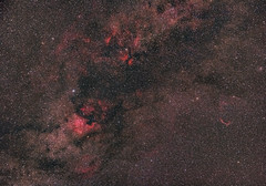 Cygnus 50 mm (alexander_skaletz) Tags: night summer astro astrophotography nature photography astronomy dark warm sky space nightskys detail germany badenwürtemberg sigma stars summernight longexposure canon eos 600d ngc ngc6995 cirrus nebula himmel cygnus 50 mm 50mm sigma50 wide widefield