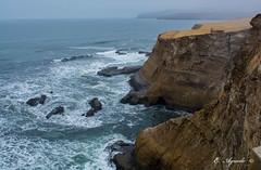 Cliff (E. Aguedo) Tags: cliff ocean pacific rocks waves water shore fog paracas ica peru southamerica ngc