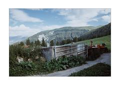 Green Wideness (Thomas Listl) Tags: thomaslistl color green plants flora fence barn swiss schweiz graubünden hill trees nature shade sky blue clouds mutten alpen schweizeralpen ngc