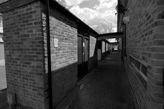 Dovedale Close (IanAWood) Tags: converted720nmirsensor digitalinfrared fullspectrumphotography harefield infraredblackandwhite lbofhillingdon nikkorafs1224mmf4gdx nikond70ir walkingwithmynikon westlondon