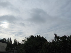 Wednesday, 14th, Dull start IMG_6414 (tomylees) Tags: essex morning summer august 2019 14th wednesday weather sky grey