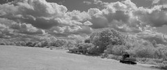 Abandoned on Fieldways Farm (IanAWood) Tags: converted720nmirsensor digitalinfrared fullspectrumphotography hertfordshire infraredblackandwhite nikkorafs1224mmf4gdx nikond70ir rickmansworth walkingwithmynikon