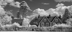 Houses from the Green (IanAWood) Tags: converted720nmirsensor digitalinfrared fullspectrumphotography harefield hertfordshire infraredblackandwhite lbofhillingdon nikkorafs1224mmf4gdx nikond70ir rickmansworth walkingwithmynikon westlondon