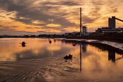 The Shore - 13 Aug 2019 - 02 (iBriphoto) Tags: alloaharbour alloa summer sunset river stirlingcastle fishingboat stirling glassworks alloadocks boats theshore riverforth oi evening goldenhour harbour sky sunsets