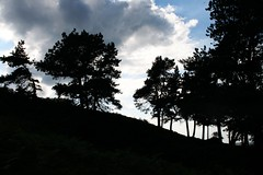 Silhouette (jumcesex12) Tags: ilkley moor yorkshire dales