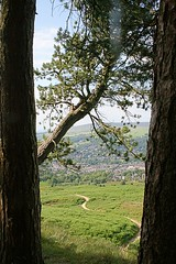 Framed by trees (jumcesex12) Tags: ilkley moor yorkshire dales