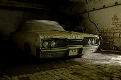 A Dodge Life...