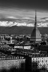 Turin (Silvio Sola) Tags: silviosola torino turin blackwhite city città piemonte piedmont italy