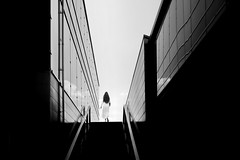she comes from the library (heinzkren) Tags: schwarzweis blackandwhite bw sw monochrome biancoetnero noiretblanc street streetphotography wien vienna woman lady building architecture architektur urban candid modern contemporary stairs treppe aufgang sky himmel outside canon eosr silhouette lines