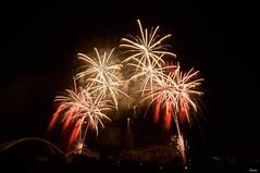 豊田おいでん祭り花火 Toyota Oiden Festival 2019 (ELCAN KE-7A) Tags: 日本 japan 愛知 aichi 豊田 toyota おいでん oiden 花火 fireworks スターマイン starmines ペンタックス pentax k3ⅱs 2019