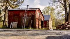 COUNTRYSIDE RUSTIC 002 (hoffler_pictorials) Tags: bird goose wood red country storytelling sonylenses felenses sonyfe rural countryside barn rustic