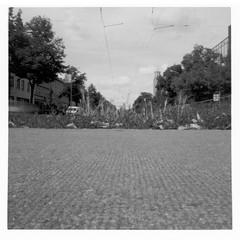 Pinhole set01 - Magdeburger Allee (FrankStehl) Tags: pinhole film 6x6 mittelformat lochkamera lochbildkamera bw blackwhite ilford fp4 ilfordfp4 germany erfurt 2019 2020 analog analogphotography