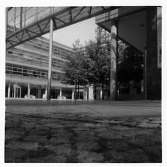 Pinhole set 1. Stadtwerke Erfurt (FrankStehl) Tags: pinhole film 6x6 mittelformat lochkamera lochbildkamera bw blackwhite ilford fp4 ilfordfp4 germany erfurt 2019 2020 analog analogphotography