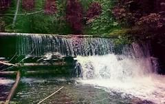 Anglų lietuvių žodynas. Žodis watered-down reiškia a  atskiestas vandeniu 2 prk. sušvelnintas, susilpnintas lietuviškai.