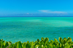 Ocean Seen from the Ikema Bridge (Nana* <salala817>) Tags: ikemaisland miyakoisland ocean sea blue okinawa japan 池間大橋 池間島 宮古島 沖縄 海 青