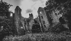 Auld Dalquharan Castle (Brian Travelling) Tags: scotland dalquharran castle old ruin national monument dailly ayrshire pentax pentaxk20d mono blackandwhite