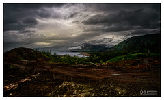 Beauty and The Beast (OATH Photography by Alison Richards) Tags: landscape atmospheric felledtrees deforestation pinetrees treetrunks mountains clouds scotland scottishhighlands onich topazstudio topazlabs fortwilliam sottishhighlands scotlandunitedkingdom