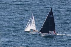 Régate. Camaret, août 2019 (Bernard Pichon) Tags: finistère france bpi760 camaret fr29 penhir voile bateau mer iroise bretagne bzh breizh