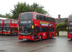 GAL EH316 - YW19VPJ - NSF - MB ORPINGTON BUS GARAGE - WED 14TH AUG 2019 (Bexleybus) Tags: goahead go ahead london mb orpington bus garage farnborough hill green street kent br6 adl dennis enviro 400 mmc eh316 yw19vpj tfl route 208
