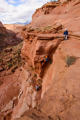 dropping into the rap (Sam Scholes) Tags: adventure utah southernutah landscape beautiful slotcanyon canyon redrock neverstopexploring dirtydevil canyoneering canyoncountry robbersroost wilderness nature