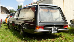 Mercedes /8 Hearse (vwcorrado89) Tags: mercedes 8 hearse benz mercedesbenz italy estate station wagon leichenwagen w114 w115 w 114 115 rust rusty abandoned wreck old car