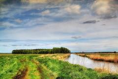 Goleniów Plain (Wojttek) Tags: goleniówplain zachodniopomorskie poland