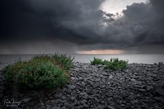 Storm Clouds (PKpics1) Tags: sunset sea england sky seascape storm beach clouds landscape bush nikon stormy somerset pebbles coastline drama porlock z7