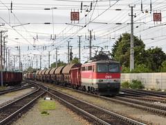 ÖBB 1142 625 (Márton Botond) Tags: öbb 1142 br1142 class1142 sgp locomotive electriclocomotive train freighttrain cargotrain trainstation transport wienerneustadt niederösterreich loweraustria austria österreich europa panasoniclumixdmclz20