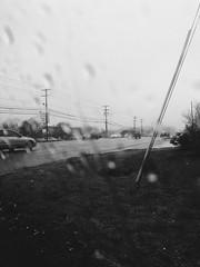 (Harley Mitchell) Tags: dreary gloom nature blackandwhite rain