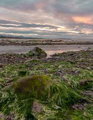 Beach Sunset (ivanstevensphotography) Tags: seaweed sea seaside beach sunset canonphotography canon canon80d rocks sand colour light pebbles