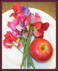 The Last Sweet Peas. The First Apple (M E For Bees (Was Margaret Edge The Bee Girl)) Tags: sweetpea lathyrus apple malus flowers flowerscolors pretty fruit canon colours red petals pink green white plate indoors scented