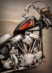 PanHead.. (Harleynik Rides Again.) Tags: panhead chopper bike motorcycle moto ride classic baker harleynikridesagain