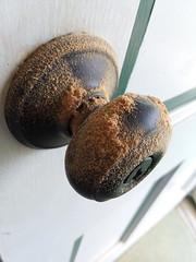 Sawdust On The Door Knob.
