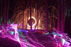 purple carpet (scienceduck) Tags: scienceduck 5c4rt 2019 august wideangle night lightpainting on ontario canada albionhills albionhillsconservationarea camping steelwool fire laser laserpointer lights forest trees woods sparks