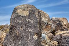 Signal Hill Petroglyphs (Ray Chiarello) Tags: signalhill petroglyphs saguaronationalpark tucson arizona desert southwest canon5dmarkiii canonef70200mmf28lisiiusm
